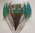 "Wholesale 10/20/50pcs Natural Peacock Eye Tail Sword Feathers 10-12""Inches"