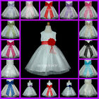 USD76 White Layer Bow BridesMaid Flower Girls Dress Baby Christening 6M to 13Yrs