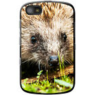 Prickly Hedgehog Hard Case For Blackberry Models