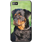 Rottweiler Dog Hard Case For Blackberry Z10