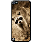 Raccoon Hard Case For iPod Touch 5th Gen