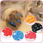 20Pcs Soft Pet Cat Paws Grooming Off Nail Claw Contrlo Cap+Adhesive Glue EE