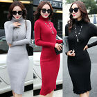 Autumn Womens Winter Long Sleeve Jumper Tops Knitted Sweater Bodycon Tunic Dress