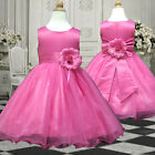 5USD58 H.Pink Wedding Pageant Christmas Gift Flower Girls Dress 1 to 14 Years