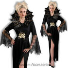 CL809 Spider Lady Web Witch Gothic Widow Halloween Fancy Dress Up Costume Outfit