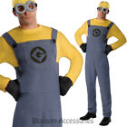 CL838 Dave Minions Fancy Dress Party Despicable ME 2 Minion Mens Costume Outfit