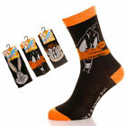 12 Mens LOONEY TUNES Cartoon Novelty 100% OFFICIAL Character Socks UK 6-11