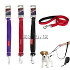 Pet Gear Dog Nylon Leash Pet Training Leads 4ft with Short/Long Dual Handles