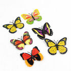 3D Artificial Butterfly Colorful Magnet Craft Home Party Wedding Decoration NEW