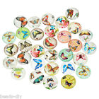 10PCs BD Mixed Butterfly Round Luminous Glass Cabochons Jewelry Dome Cameo 20mm