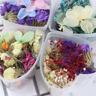 Mixed Dried Flowers 3D Nail Art With Heart-Shaped Box Glass Bottle Decoration