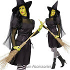 CL988 Ms Wicked Witch Halloween Horror Scary Fancy Dress Costume Outfit + Hat