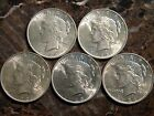 Lot of (5) NICE AU+ Peace Silver Dollars AU-UC Lightly Circulated US $1 Coins