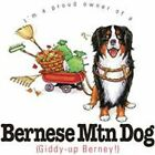 Bernese Mountain Dog Funny T Shirt 7 X Large to 14 X Large Pick Your Size