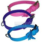 "Genuine Leather Dog Collar Small Glamour Adjustable 5/8"" Wide 3 Colors"