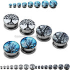 "6G-5/8"" Stainless Steel Celtic Life Trees Screw Plugs Tunnel Expander Stretchers"