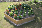 Pentagonal Timber Raised Bed - 2 Tier - Ideal for flower bed,herb planter & more
