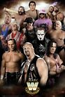 WWE Legends Maxi Poster 61 x 91,5 cm