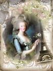 Whimsy Dust Marie Antoinette Quilt Block Multi Szs FrEE ShiPPinG WoRld WiDE (R5