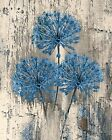 Blue Brown Rustic Distressed Flower Wall Art Home Decor Matted Picture