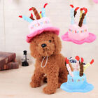 New Fashion Hats For Cats Pets Dogs Birthday Caps Hat with Cake Candles Design #