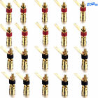 2/12/20Pc Brass Binding Post Terminal Connector plated Audio Speaker ROHS 100VA