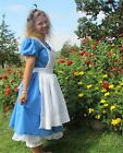 Halloween in Wonderland Quality Costume Modest Storytime ~Alice~ Adult Size 4-14