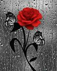 Red Gray Wall Art, Red Rose Flower, Butterfly, Raindrops, Red Home Decor Picture