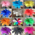 HOT 10x Large Ostrich Feathers Costume Craft Xmas Birthday Wedding Party 20-30CM