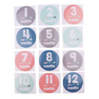 1-12 Months Baby Milestone Month Animal Stickers Baby Boys Girls Photo Props