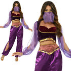 Arabian Princess Costume Genie Belly Dancer Womens Ladies Fancy Dress Outfit