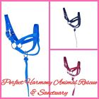 Nylon Llama Halter 2 Sizes and 3 Colors Available NEW