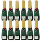 INFLATABLE CHAMPAGNE BOTTLE FUN CELEBRATION PROP ACCESSORY PARTY FANCY DRESS LOT