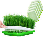 Hydroponics Seeds Nursery Pots Tray Sprouter Baskets Healthy Grow BPA Free Tray