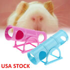 Kyпить Hamster Exercise Toys Seesaw Sports Cage House Tunnel Tube Pet Supplies US Fast на еВаy.соm