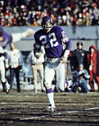 PAUL KRAUSE Photo Picture MINNESOTA VIKINGS Football Photograph Print 8x10 11x14 $4.95 USD on eBay