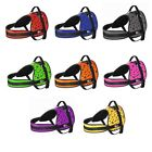 Dog Harness Adjustable Leather Strong Fabric Soft Padded Outdoor No Pull Vest