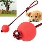 Puppy Playing Pet Puppy Chew Toys Solid Rubber Ball Dog Chew Toy Pet Puppy Toys