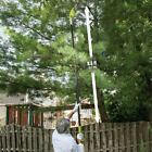Pole Saw Tree Trimmer Electric Chainsaw Pruner 6-8' Telescoping 14' Branch Reach