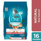 Purina ONE Natural Dry Cat Food, Tender Selects Blend With Real Salmon