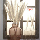15 X White Pink Fluffy Pampas Home Decor Vase Dried Flowers Plant Stems Uk