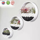 Hanging Flower Pot Wall Vase Planter Round Iron Glass Art Home Indoor Decoration