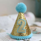 Cat Party Costume Headwear Birthday Accessory Puppy Pet Hat Sequins Dog