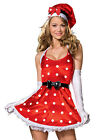 Adult Women's 5 Piece HOLIDAY PIN-UP Christmas Costume! Sizes S, M and L