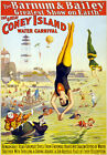 TZ62 Vintage Barnum Circus Carnival Poster A1 A2 A3