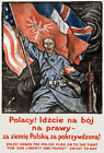 W75 Vintage WWI Polish Army Poland Recruitiment War Poster Print WW1 A1 A2 A3