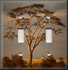 Light Switch Plate Cover - Baobab Tree At Sunset - African Home Decor