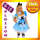 J70 Alice in Wonderland Ladies Disney Fancy Dress Up Halloween Costume Outfit