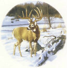 White Tailed Deer Stag Winter Snow Select-A-Size Ceramic Waterslide Decals Tx image