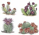 4 Blooming Desert Cactus Cacti Select-A-Size Waterslide Ceramic Decals Tx image
